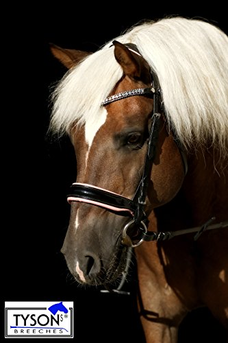 Trense ROSI Reitzaum Sperriemen zum ändern ! Lack Leder Rosa Super Glitzer Strass Pony VB WB XF Kaltblut Tysons Leder Butterweich Schwarz Rosa (Warmblut)
