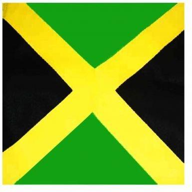 Unisex Jamaica Vlag Bandana voor carnaval of vrijetijdskleding