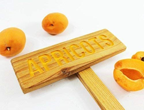 APRICOTS Rustic Garden Max 66% OFF Challenge the lowest price of Japan ☆ Tree Sign: Routed Marker Hand Plant