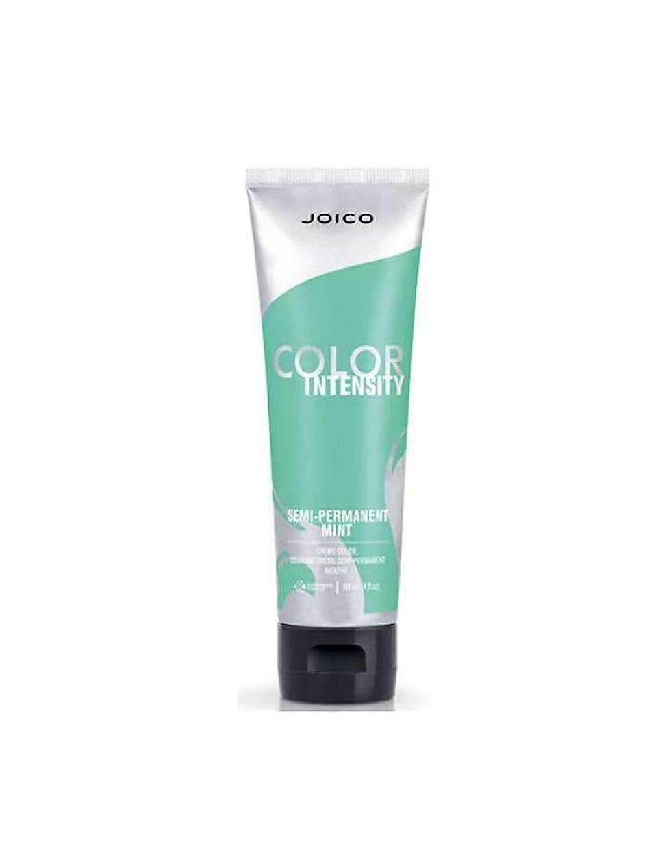 トレイセーブ延期するJoico 半永久的な色強度、 4オンス より