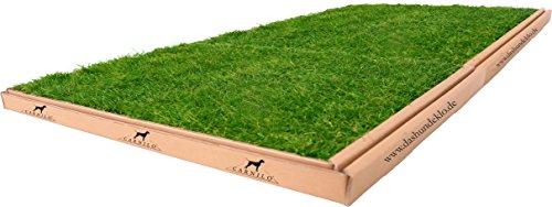 CARNILO XL Hundeklo aus echtem Rasen 120 x 80 cm für ältere Hunde, Welpen, Trainingsunterlage