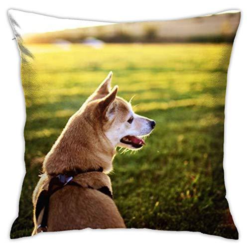 Funda de almohada cuadrada personalizada para perro, dormitorio, oficina, 45,72 x 45,72 cm