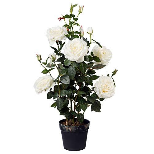 Gasper Künstliche Rosen Pflanze Blumen Rosenstock (Weiß, 48)