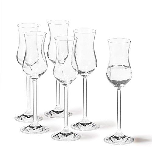 6pezzi da liquore in vetro Grappa Edle fruttati Bicchieri Grappa 95ML