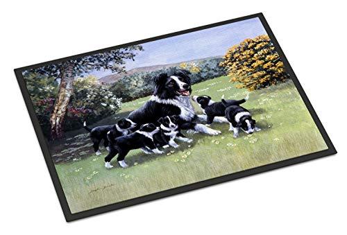 Caroline's Treasures BDBA0257JMAT Border Collie Puppies with Momma Indoor or Outdoor Mat 24x36, 24H X 36W, Multicolor