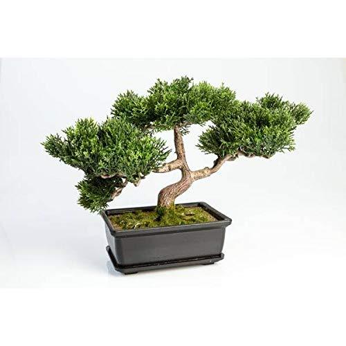 artplants.de Set 2 x Künstlicher Bonsai Ceder mit 120 Zweigen, im Topf, 25cm - Hochwertiger Kunstbonsai