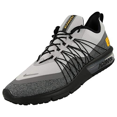 Nike Herren Air Max Sequent 4 Utility Leichtathletikschuhe, Mehrfarbig (Wolf Grey/Reflect Silver/Cool Grey/Black 003), 44 EU