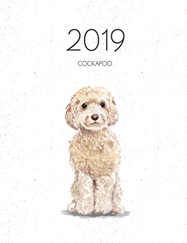 2019 Cockapoo: Dated Weekly Planner with to Do Notes & Dog Quotes - Champagne Cockapoo