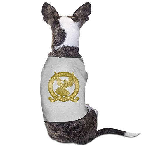 Florasun - Vestiti irlandesi Air Corps alla moda per cani e gatti di piccola taglia