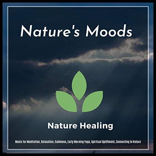 Sanct Devotional Club, Mystical Guide, Liquid Ambiance, Spiritual Sound Clubb, Serenity Calls, Ambient 11 & Yogsutra Relaxation Co