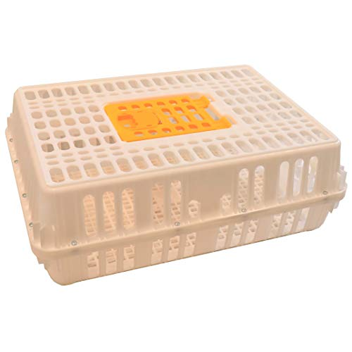 Rite Farm Products 29x21x10.5 Poultry Transport 4H Show CAGE COOP Crate Chicken