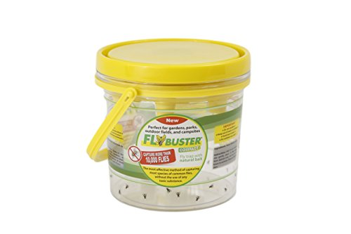 Flybuster Fly Trap - Outdoor Living, Fly and Pest Control Trap, 1-Liter, Compact -  FLYBUSTER MINI TRAP