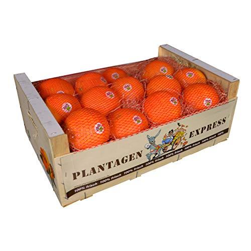 BIO-Orangen direkt importiert aus Spanien, Premiumqualität, frisch und saftig, 8kg Plantagen Express
