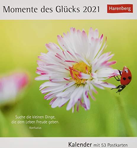 Momente des Glücks Postkartenkalender 2021 - Tischkalender mit Wochenkalendarium - 53 perforierte Postkarten zum Heraustrennen - zum Aufstellen oder Aufhängen - Format 12 x 15 cm