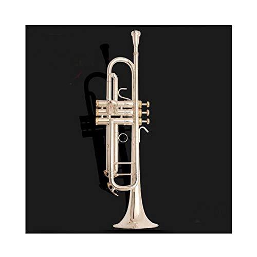 Trompeta, plateado oro lacado trompeta Instrumento B Flat Principiante prueba de rendimiento profesional, Tres Estilos Opcional regalo perfecto (Color : Silver)