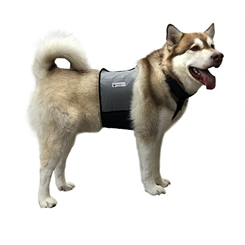 CoolerDog Dog Cooling Vest and Cooling Collar - Ice Vest for Dogs Large (27' to 34' Girth)