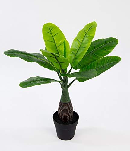 Seidenblumen Roß Bananenpalme 45cm im Topf GA Kunstpflanzen Kunstpalmen künstliche Palme Pflanzen Bananenpflanze