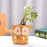 Suculento de cerámica Planter, linda cerámica Fox plantadores...