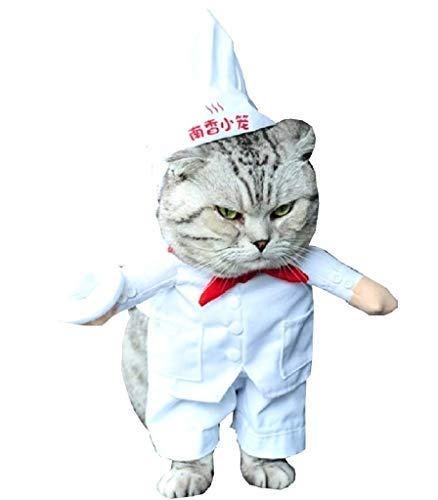 Vestido Talla S para el Cocinero Gato Vestir Ideas para Funny...