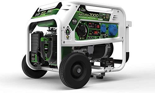 Genergy - Générateur à gaz et à essence Pro Natura, 74dB/7000W