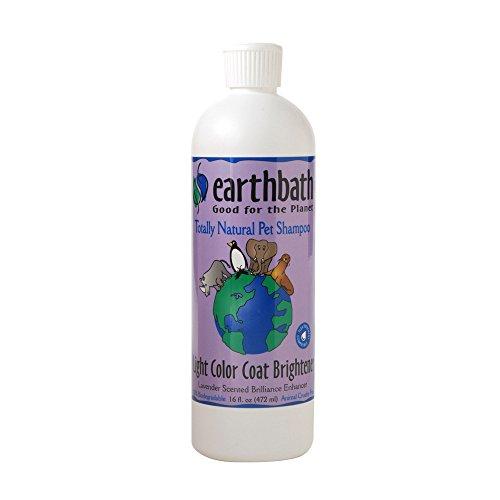 Earthbath All Natural Pet Shampoo (2 Pack)