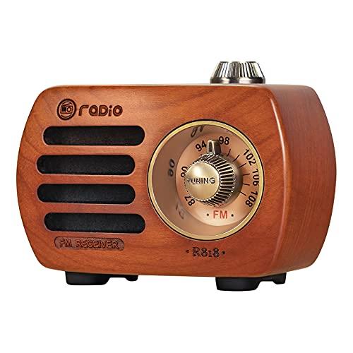 PRUNUS R-818 Holz Mini Radio Klein,...