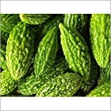 ALEXI Bitter Gourd Seeds - Ampalaya Seeds - Non GMO - High Germination - Bitter Melon Seeds for Planting - Momordica charantia (10)