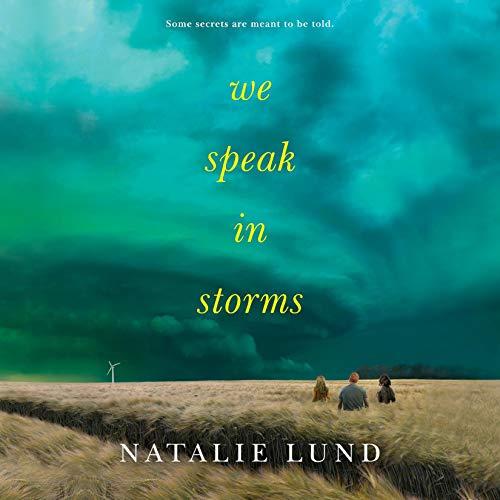 We Speak in Storms audiobook cover art
