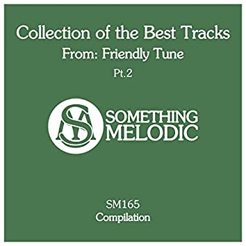 Collection of the Best Tracks From: Friendly Tune, Pt. 2