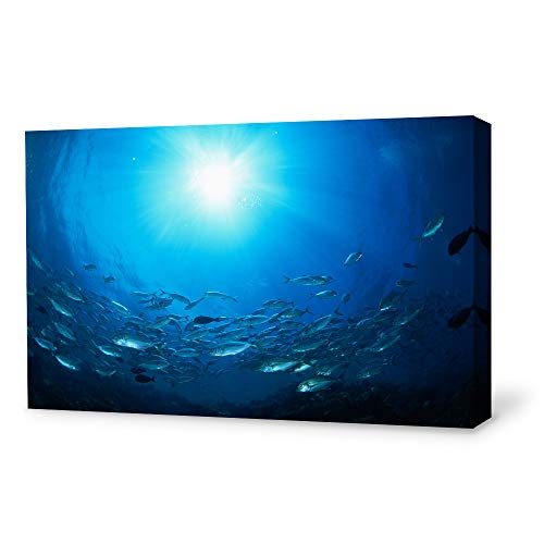 SIGNWIN Canvas Wall Art Sea Fish Canvas Prints Home Artwork Decoration for Living Room,Bedroom - 16x24 inches