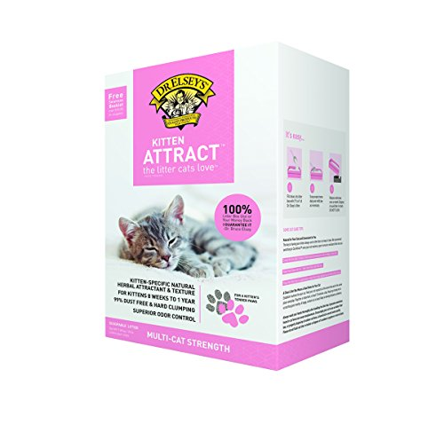 Dr. Elsey's Precious Cat Kitten Attract Kitten Training Litter