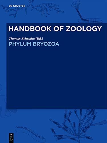 Phylum Bryozoa (English Edition)