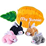 My Bunnies Plush Toy Set | Includes 4 Talking Fluffy Rabbits | Gray, Tan, Pink, and Black Bunnies with A Plush Carrot Shaped Carrier | Great Gift for Baby and Toddler Girls or Boys