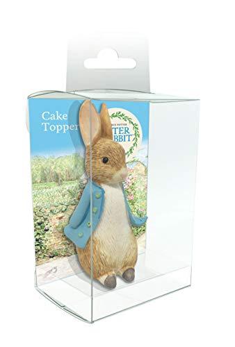 Peter Rabbit Cake Decoration