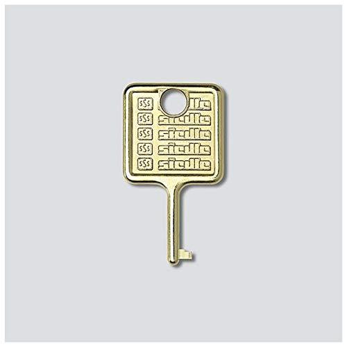 Siedle 210007018-00 Edelstahl SIED Ersatzschlüssel für Informationsmodul IM 511-0