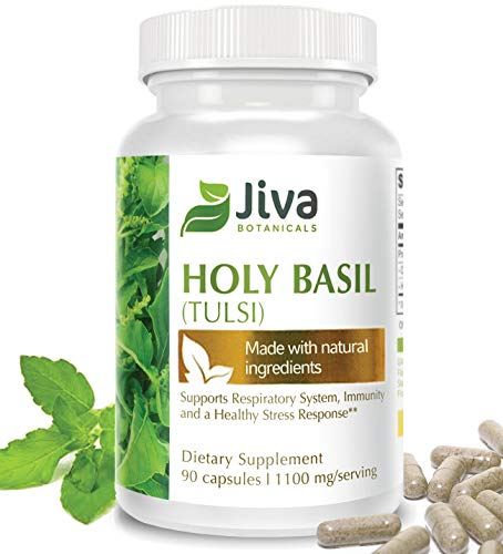 Holy Basil Capsules Immune Support, Stress Support, Heart Health. Advanced Tulsi Holy Basil Extract Formula by Jiva Botanicals 90 Veg Caps