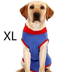 BIGNADO Combinaison pour chien Taille XL
