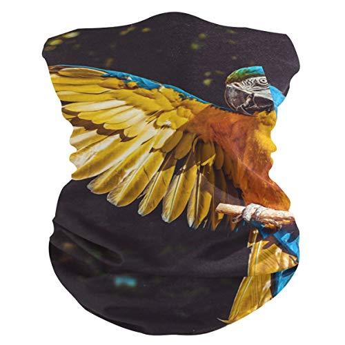 Stoff-Gesichtsmaske für Damen, multifunktional, Bandanas, Schnittmuster, unisex, Papagei, Gelb, Ara, Vogel, Stoffmaske, Muster, bedruckbar, für Herren und Damen, Kopfbedeckung, Kopftuch, waschbar
