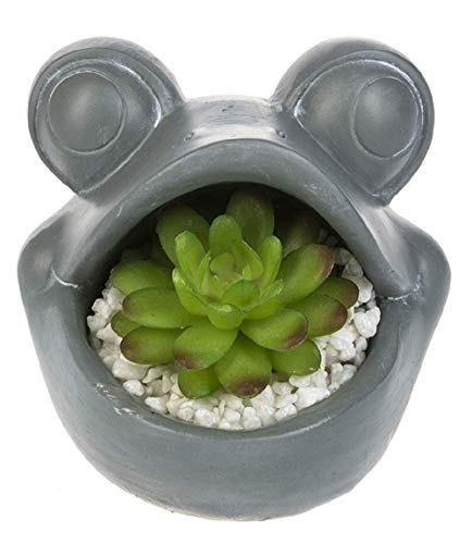 Ganz Midwest-CBK Frog Figurine with Succulent