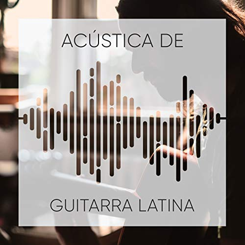 Mejores Guitarristas Flamencos De La Historia