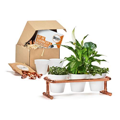 CREATE! by OBI DIY Pflanzbank | Dekorative Blumenbank aus Kupfer zum Selberbauen