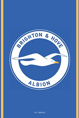 Brighton & Hove Albion: Notebook Journal high quality size 6x9 100 page