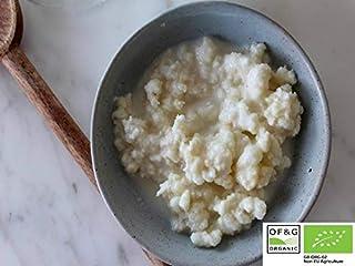 15 g de Strain and The Best in Europe Organic Milk Kefir Grains Tibetan Mushroom Grzybek Starter
