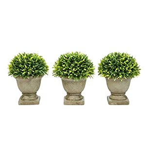 "Pure Garden Artificial Podocarpus Grass Plant in Concrete Round Set of 3, 7.5"" Decorative Faux Indoor Ornamental Potted Topiary"