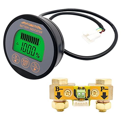 RUIZHI Monitor di Batteria 120V 350A Voltmetro Amperometro Tensione Corrente Meter con Cavo, Battery Tester per Caravan Barca Solare