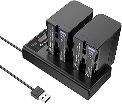 Powerextra 2 Batteria di Sostituzione per Sony NP-F970 F960 F930 F950 da 8800mAh con caricabatterie doppio LCD per Sony DCR-VX2100 DSR-PD150 DSR-PD170 FDR-AX1 HDR-AX2000 HDR-FX1 HDR-FX7 HDR-FX1000