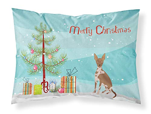 Caroline's Treasures CK3491PILLOWCASE - Funda de almohada para árbol de Navidad de estilo abisinio o africano sin pelo de perro, estándar, multicolor, de Caroline's Treasures CK3491PILLOWCASE