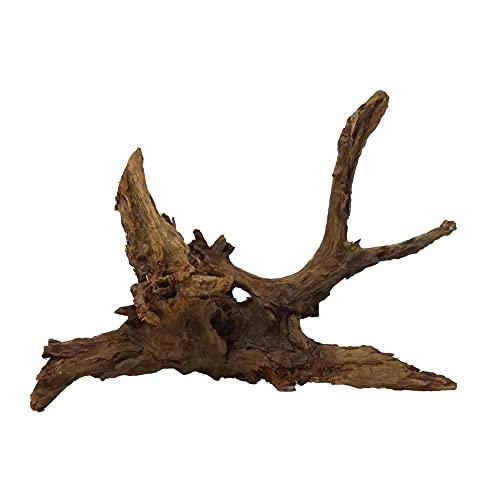 XXL Mangrovenwurzel Nr.2653 Aquarium Wurzel Mangrove Holz Deko Aquascaping Dekoration Landschaft Moos Natur Echtholz