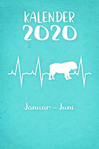 Kalender 2020: Türkiser Tageskalender Englische Bulldogge Herzschlag Hunde 1. Halbjahr Januar Juni ca DIN A5 weiß über 190 Seiten