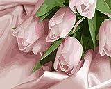 NA/ DIY Pintura al óleo Pintar por números para Adultos - Cuadro de Pinturas con numeros con Pinceles y Colores Brillantes -16 * 20 Pulgadas --WM-1756-Tulipanes Rosas románticos